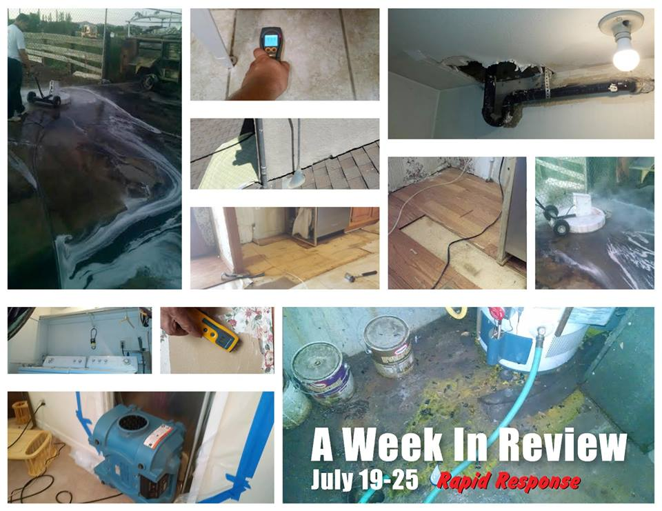 Week in Review July 19-25