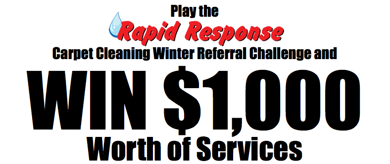Carpet Cleaning Winter Referral Challenge